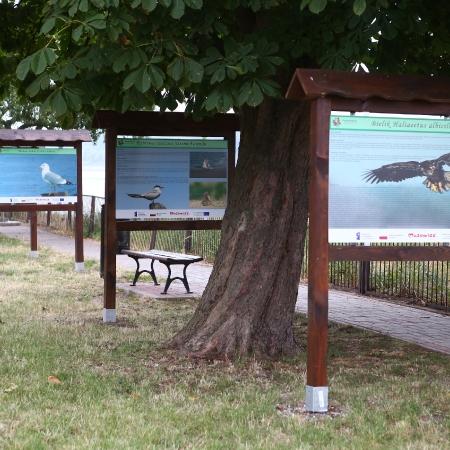 Spacerkiem po turystycznych atrakcjach Powiatu Płockiego